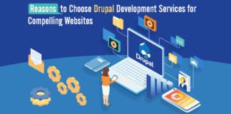 Reasons to Choose Drupal Development Services for Compelling Websites